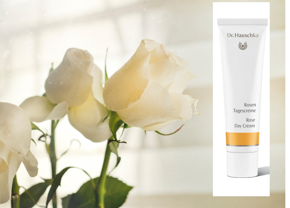Best In Beauty: Dr Hauschka Rose Day Cream