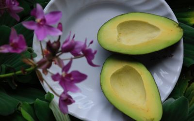 5 Health & Beauty Benefits of Avocado
